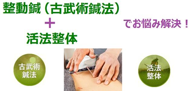 整動鍼と活法整体