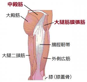 腰痛予防1